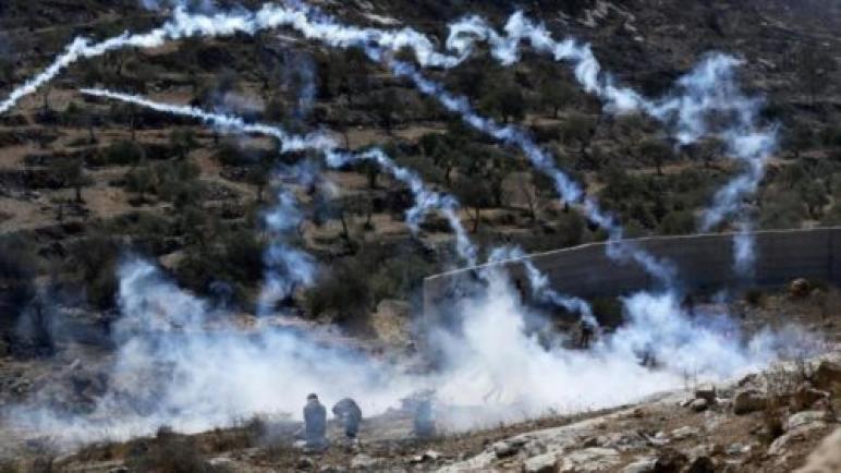 إصابة مائة مدني بجروح في مسيرات للتضامن مع الأسرى الفلسطينيين في سجون الإحتلال الإسرائيلي