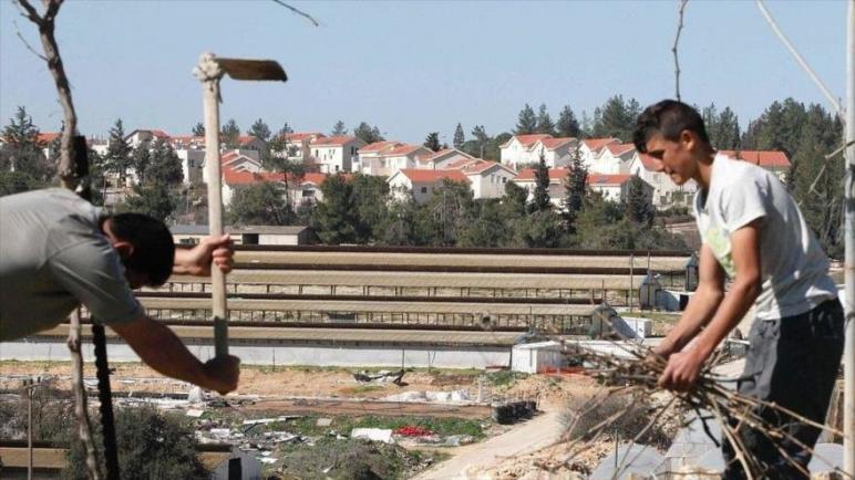 المستوطنون الإسرائيليون يحذرون السكان الفلسطينيين في الضفة الغربية من التواصل والتعاون مع منظمات حقوق الإنسان