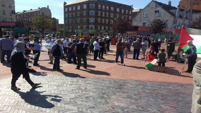 المؤسسات الفلسطينية في الدنمارك تعتصم تضامنا مع فلسطينيي لبنان