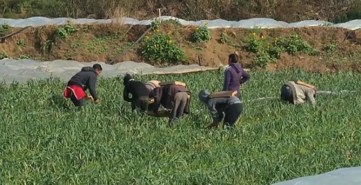 سكان قطاع غزة يحاولون تعويض وقف المساعدات الأمريكية بالمشاريع الصغيرة