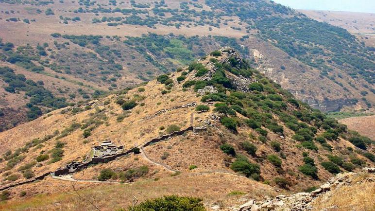 إسرائيل تطلق النار على مسلحين تسللوا إلى الجولان السوري