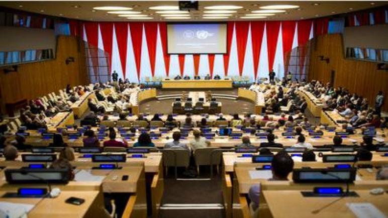 هولندا تصوت ضد إسرائيل في الأمم المتحدة لإنتهاك حقوق المرأة الفلسطينية