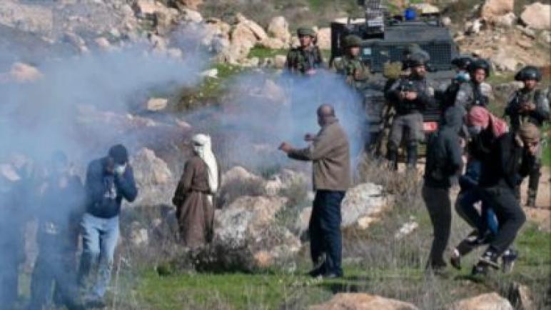 فلسطين تدين الإرهاب المنظم من قبل المستوطنين الإسرائيليين