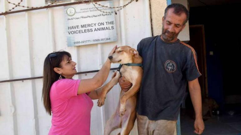 الايطالية ديانا بابيش – تركت وظيفتها الأمنة في البنك لترعى الكلاب في غزة