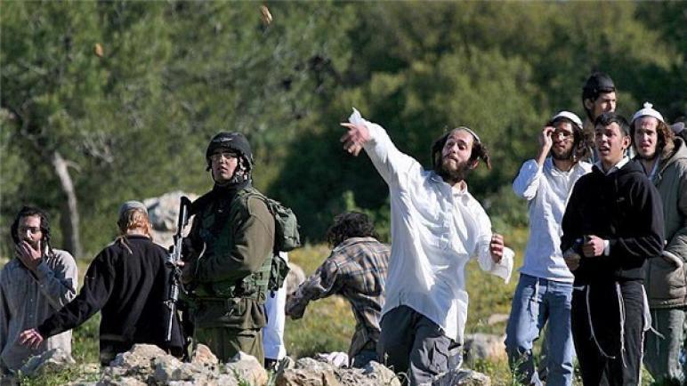 وفاة فلسطينية في حادث سيارة بسبب رشقها بالحجارة من قبل مستوطنين إسرائيليين